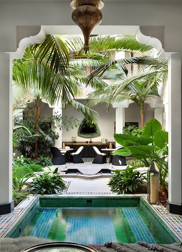 garden and landscape design ideas for south florida - Florida Landscape Design Ideas